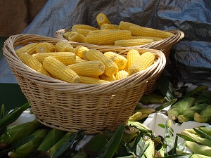 Creative Commons Fresh Sweet Corn by Brian Giesenis licensed underCC BY 2
